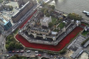 Tower-of-London-Poppies-407402